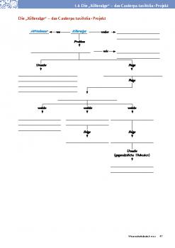 Wissenschaftsdeutsch_NEU_Netzwerk_1.6